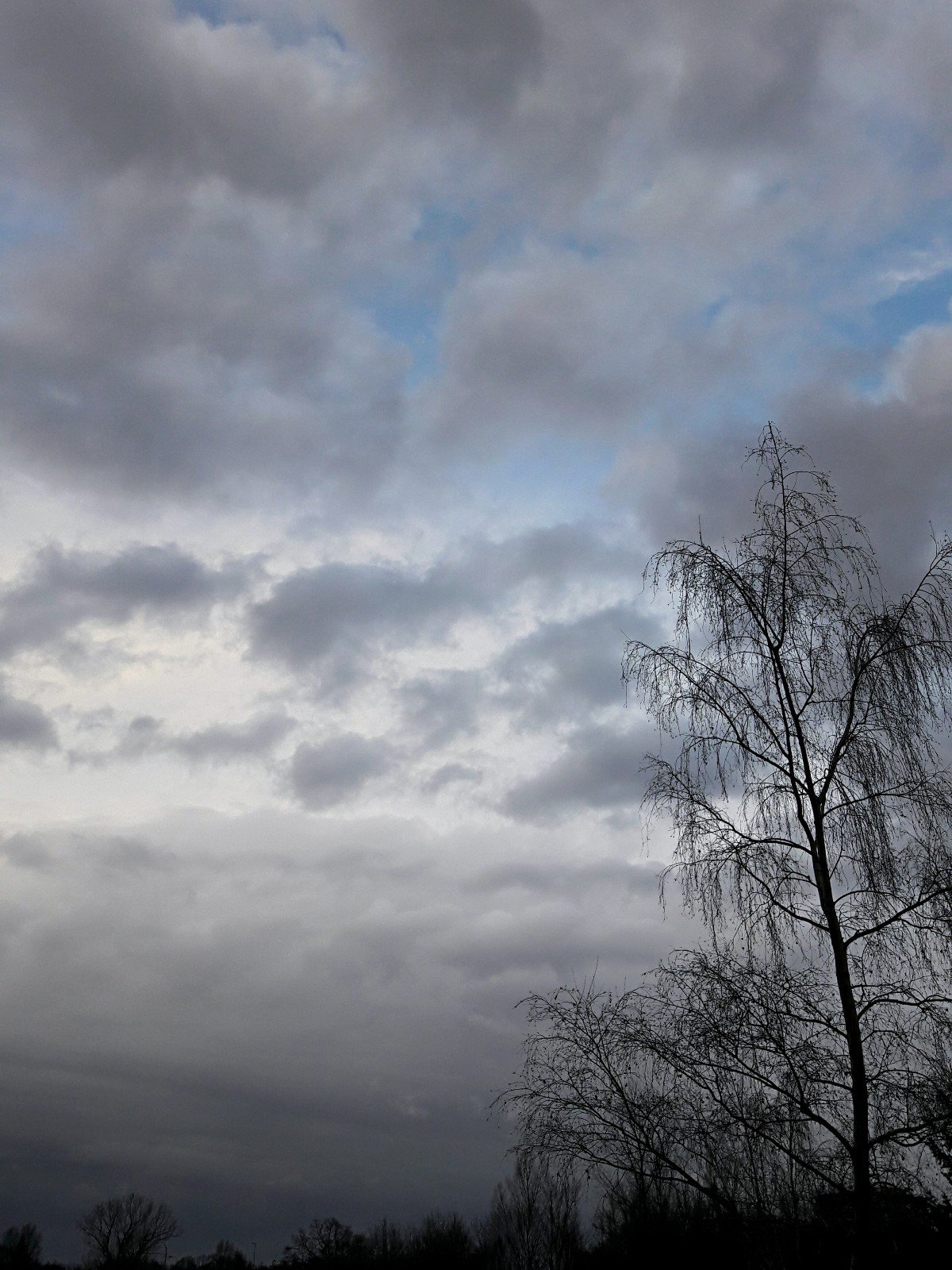 Počasí Hradec Králové▪Třebeš
