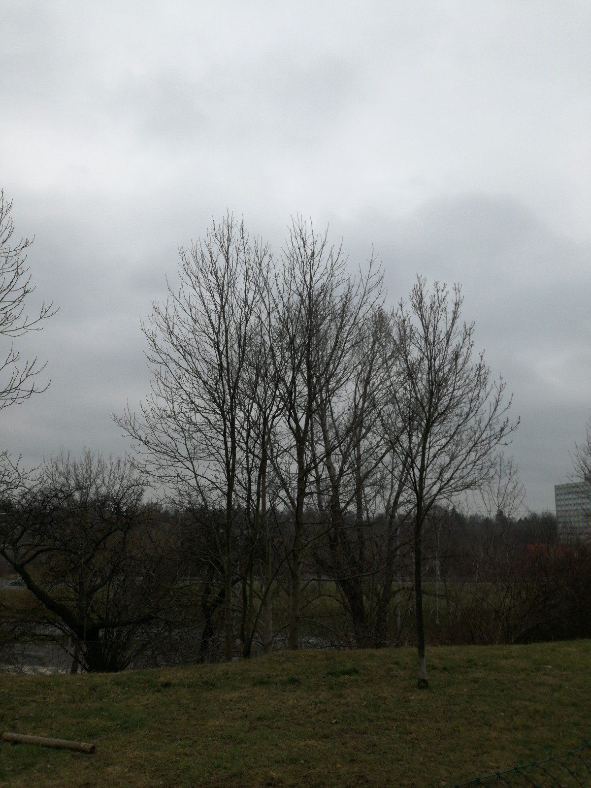 Počasí Praha 9