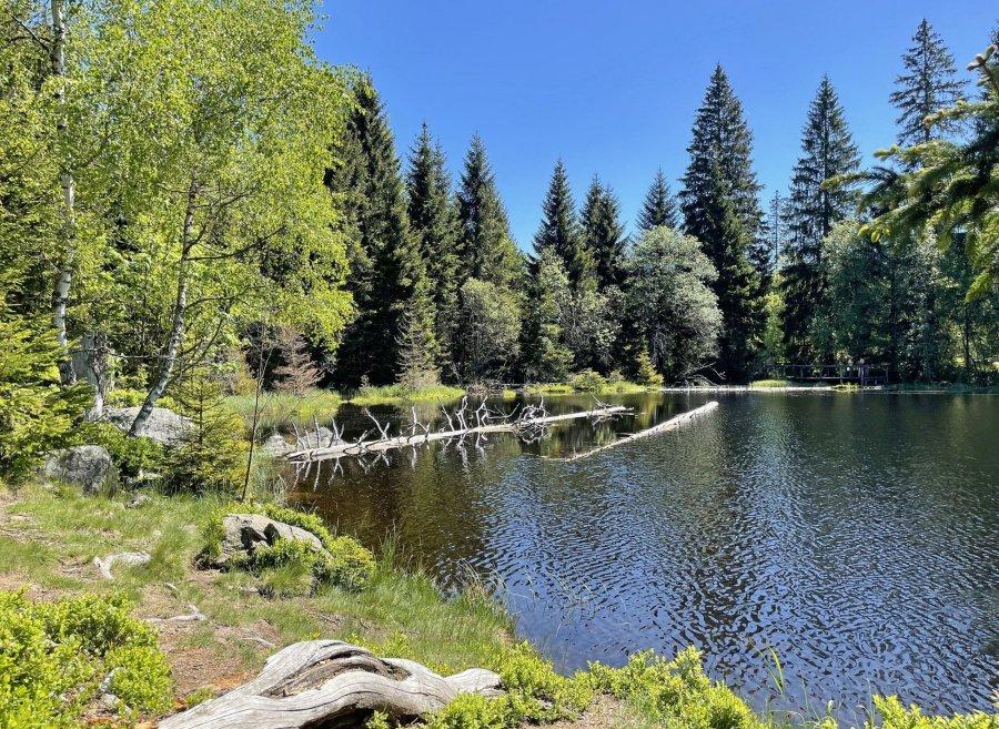 Jezero Laka