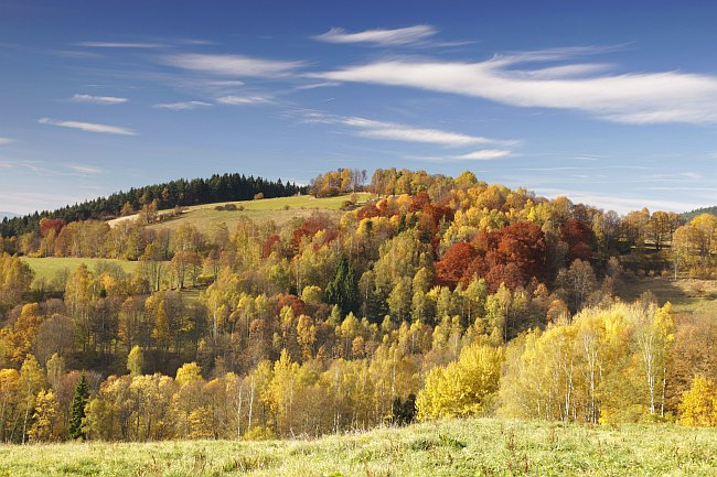 Výsledek obrázku pro nicov šumava