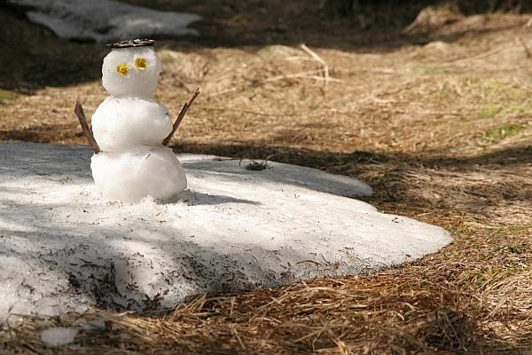 Poslední sněhulák na Šumavě