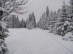 Zima na Božím Daru