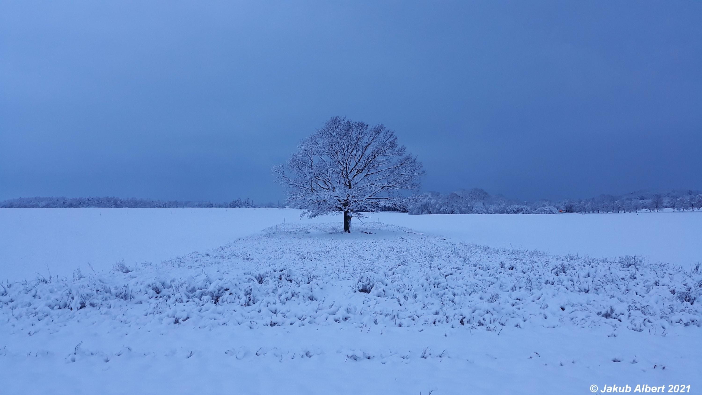 Sníh na okraji Prahy