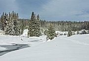 Prachový sníh na Modravě