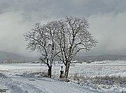 Sníh v Plzni