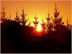 Svítání nad lesem