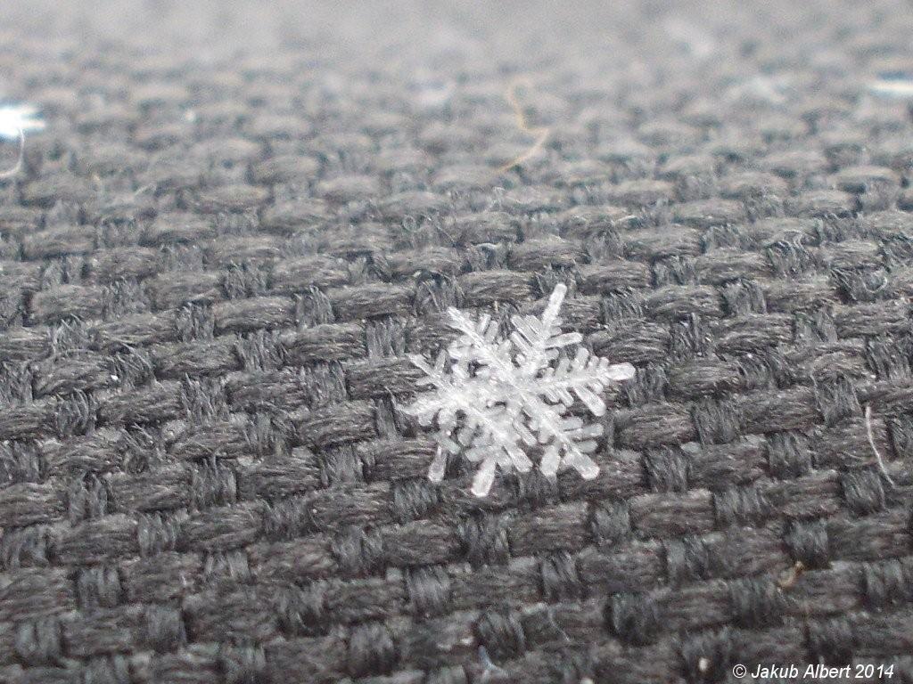 Sněhová vločka