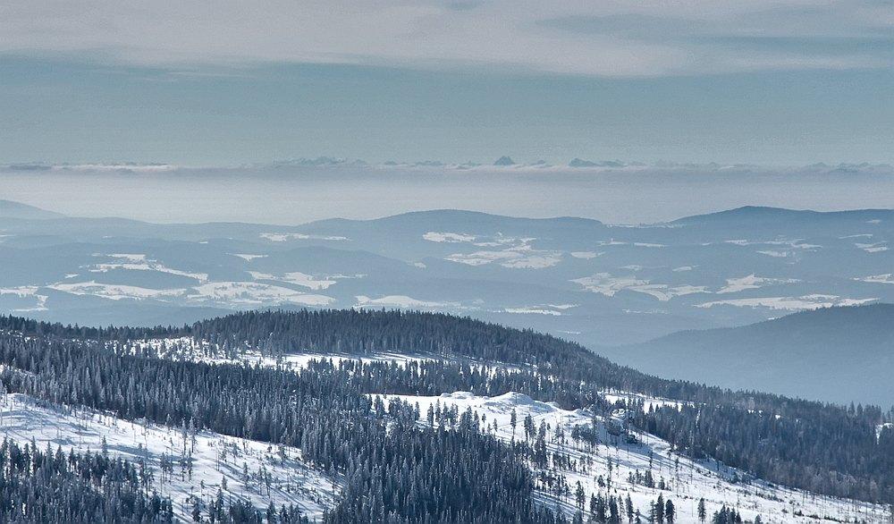 Velký Javor - Alpy