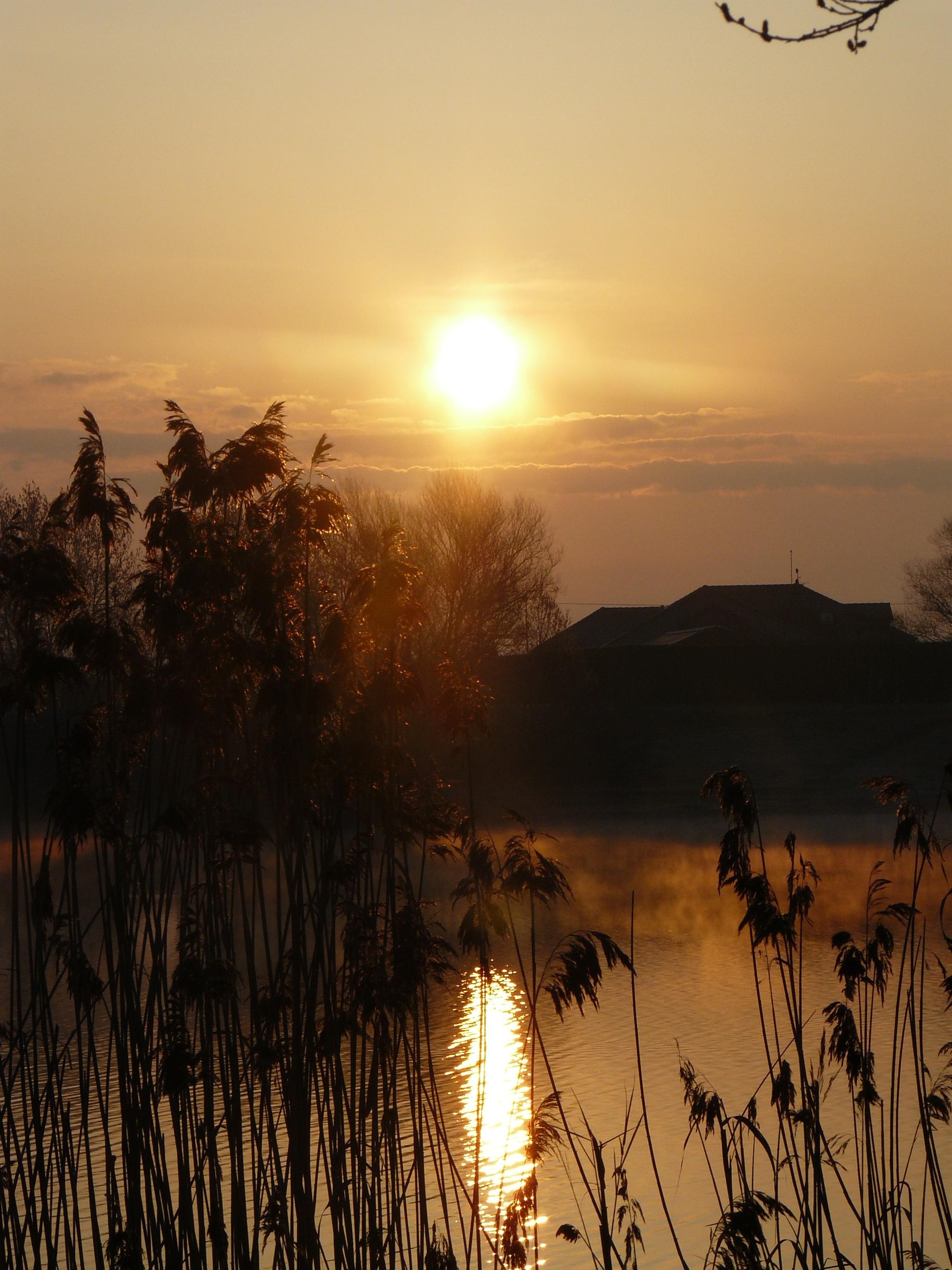Brzké svítání