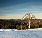 Konec zimy na Šumavě
