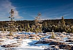 Šumava - konec zimy