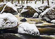 Hamerský potok na Šumavě