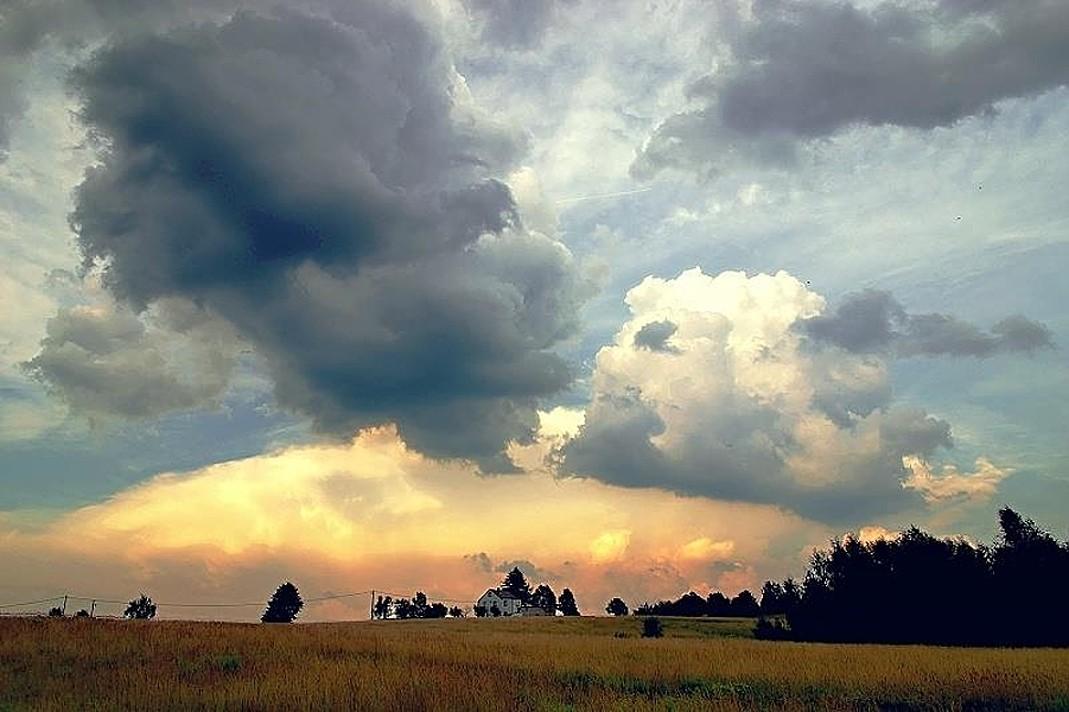 Cumulus - louka