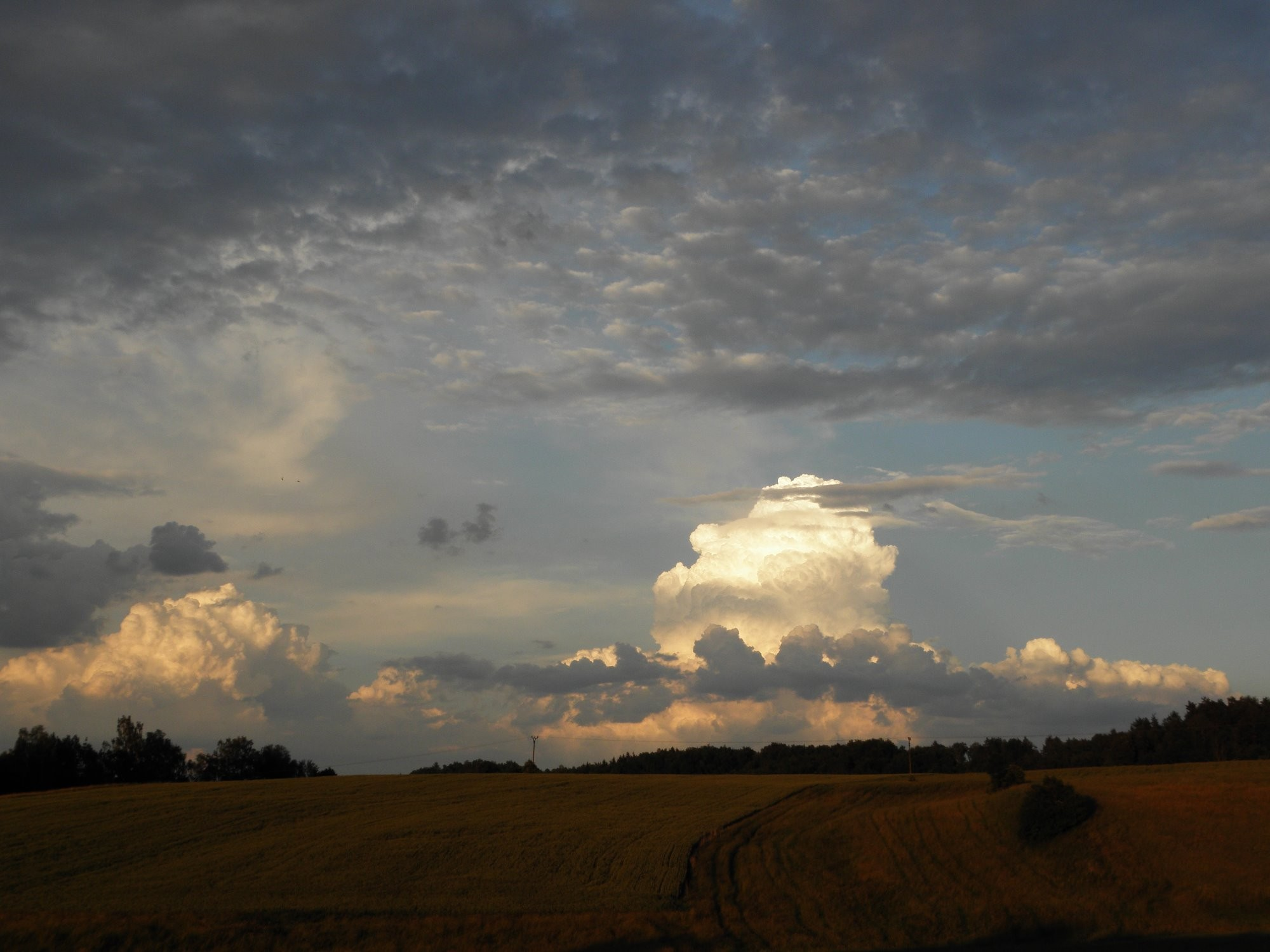 Podvečerní oblaka