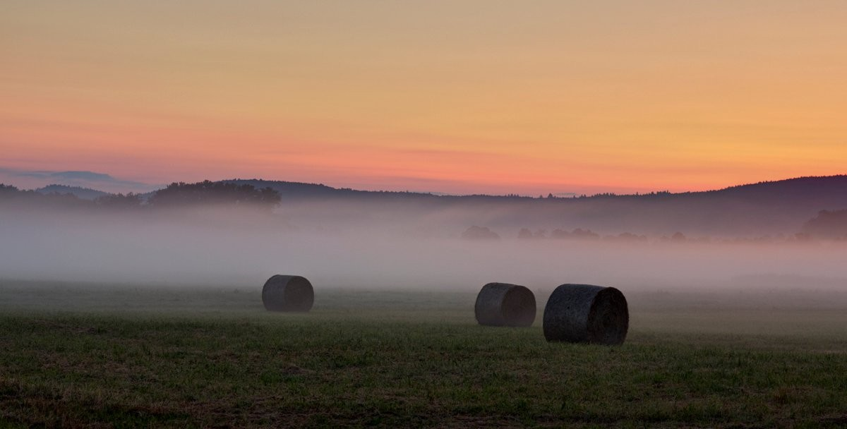 Mlha u Švihova