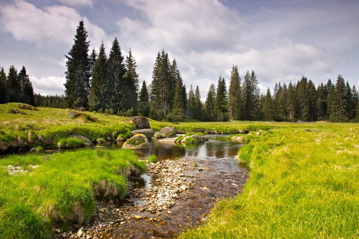 Roklanský potok u Modravy