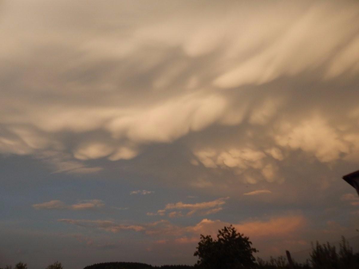 Oblak mammatus