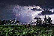 Koně v bouři