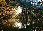 Tento způsob podzimu...