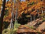 Podzim v Ondřejníku - Beskydy