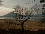 Vypuštěné Máchovo jezero