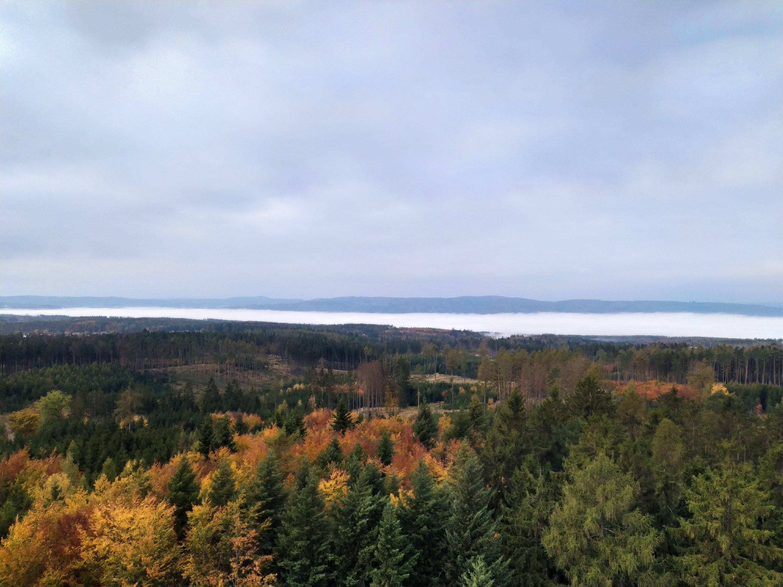 Vzdálené údolí v mlze