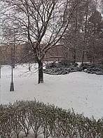 Brno - Řečkovice