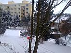 Borovina