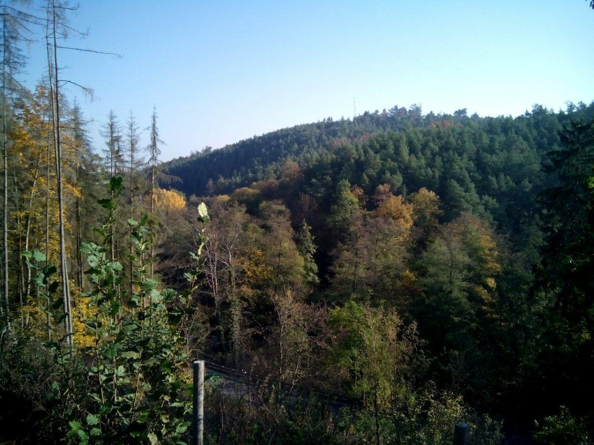 Počasí Borovina